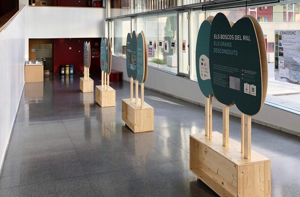 Exposició 'Els boscos del riu, els grans desconeguts' del projecte Life Alnus, al vestíbul de la facultat de Ciències i Tecnologia de la Universitat de Vic